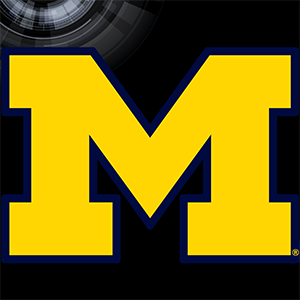 Michigan Graphic Set